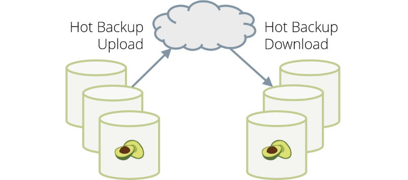 arangodb 3.5.1 hot backup upload download
