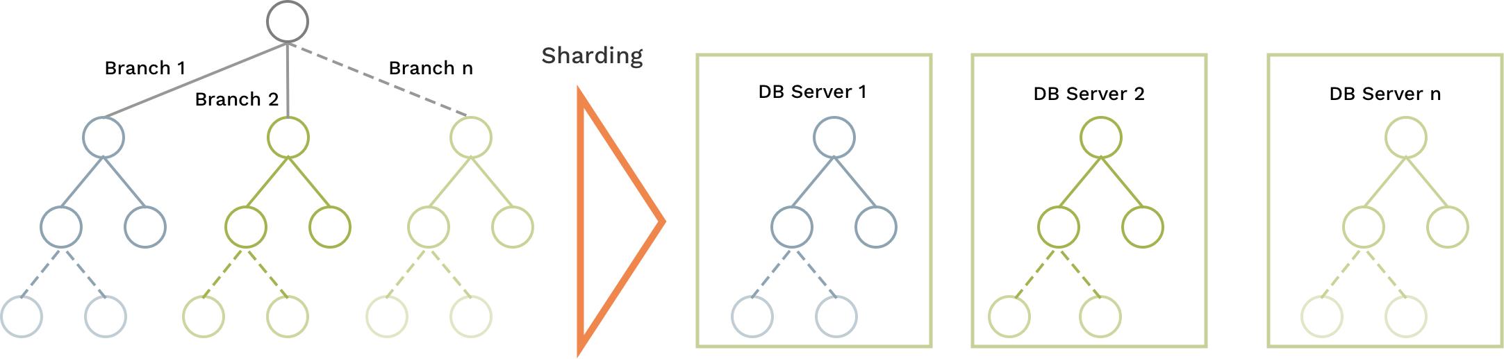 ArangoDB Disjoint SmartGraphs Schema